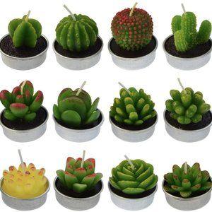 Set of 12 Cute Succulent Cactus Tealight Candles